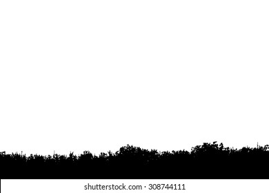 silhouette meadow background