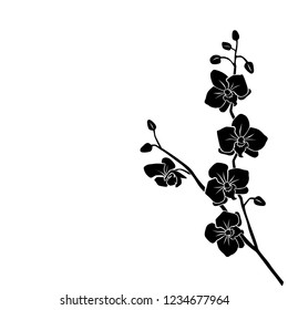 Silhouette Orchid branch with flowers, black color, isolated on white background. Vector illustration