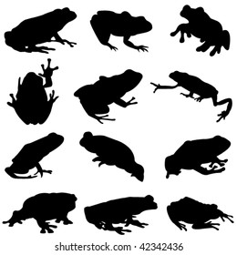 Silhouette outline of the different types of frogs