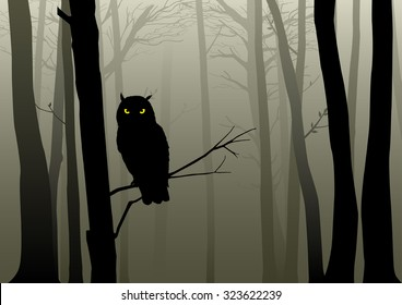 Silhouette of an owl in the misty woods
