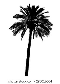 silhouette of palm trees realistic vector illustration isolated on white background