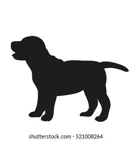 silhouette, puppy