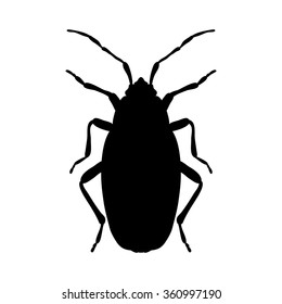 silhouette Pyrrhocoris apterus. beetle silhouette. Bug-soldier silhouette. Firebug silhouette.  Firebug  silhouette isolated on white background.  hand-drawn beetle silhouette. Vector illustration
