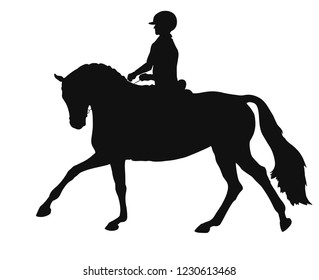 A silhouette of the rider galloping on the horse. Equestrian, horsemanship.