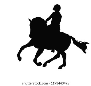 A silhouette of the rider on a horse. Equestrian, horsemanship.