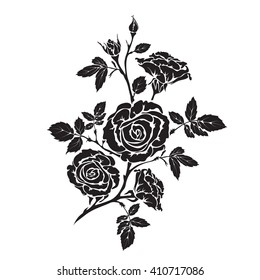 Silhouette rose branch with opened flowers and buds, hand drawn vector