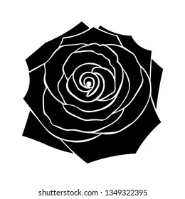 Silhouette of roses with leaves on a white background. Floral background.