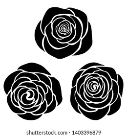 Silhouette of roses on a white background. Floral background.