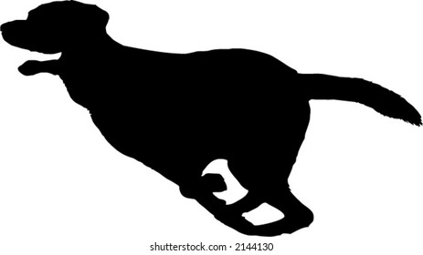 silhouette of a running dog