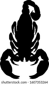 Silhouette of a scorpion as symbol for Scorpio which is the eighth sign of the zodiac. Vector illustration.