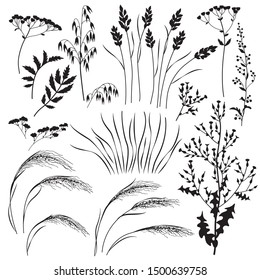 Silhouette set of wild grasses, herbs and cereals isolated on white background.  Simple oats, lettuce, bluegrass, sagebrush,   mat grass and field flowers vector flat illustration.