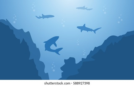 Silhouette of shark and cliff on blue sea landscape