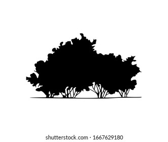 Silhouette of shrubbery, hand drawn bush for architectural illustration