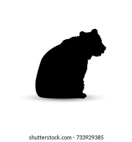 Silhouette of sitting brown  bear.