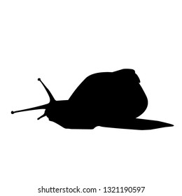 Silhouette of a small snail. Isolated vector illustration. Black colour.
