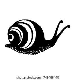 Silhouette of snail. eps10