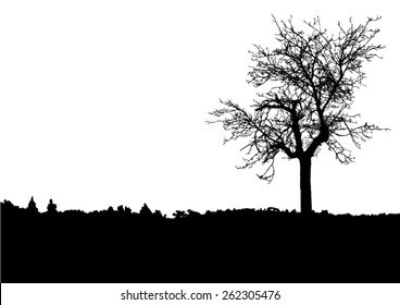 Silhouette of tree with bare branches - landscape scenery - trees afar- landscape and black space for text - isolated - vector