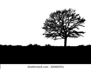 Silhouette of tree, bush with bare branches. Winter scenery trees afar landscape and black space for text, isolated vector