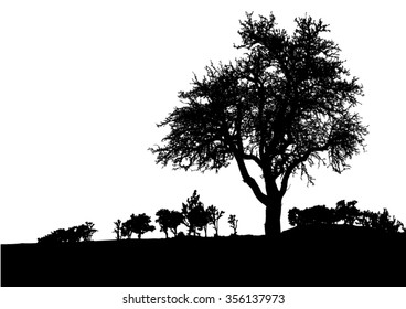 Silhouette of tree, bush with bare branches. Winter scenery trees afar landscape and black space for text vector