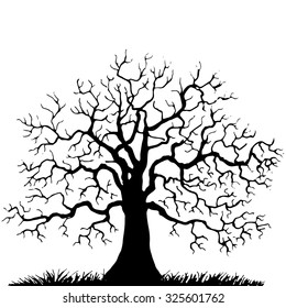Silhouette of  tree without leaves, winter oak, hand drawn vector illustration