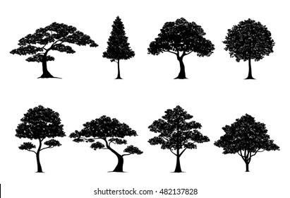 silhouette tree.Vector in silhouettes set