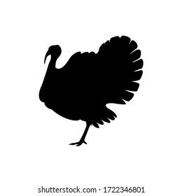 Silhouette turkey on white background. Farm animals collection. Icon.