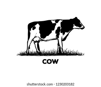 Silhouette Vector Black Cow Sign Symbol Icon Animal Livestock Logo Template Design Inspiration