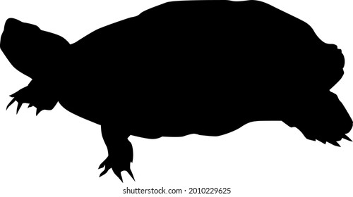 a silhouette vector illustration of a turtle.