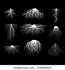 Silhouette White Tree Roots Various Types Shapes Set Underground Element of Plant for Web and App. Vector illustration
