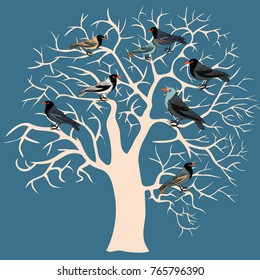 Silhouette of winter tree with birds on it. Vector illustration on blue background