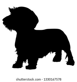 The silhouette of a Wirehaired Dachshund. Vector illustration