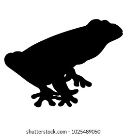silhouette woody frog is red-eyed  vector illustration