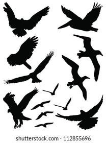 Silhouettes of birds in flight 2-vector