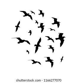 silhouettes of birds isolated on white background vector,  gull