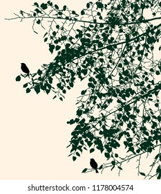 Silhouettes of birds on linden branches