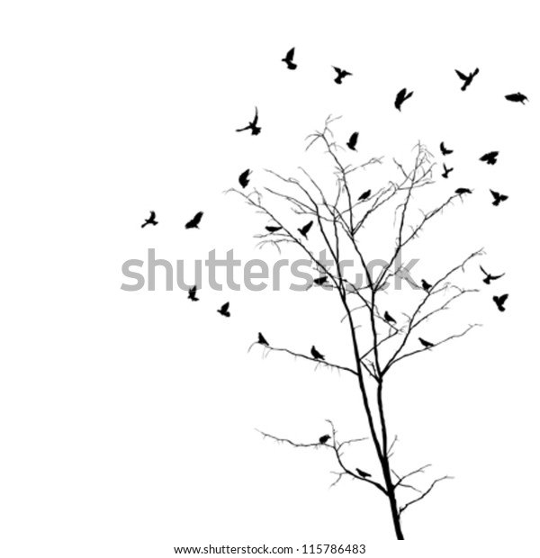 silhouettes-birds-over-brunches-leafless