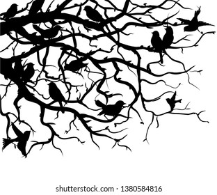 Silhouettes of birds sitting on tree branches. Wall sticker. Black and white graphic drawing of branches and birds sitting on them. Silhouette of tree branches and birds.