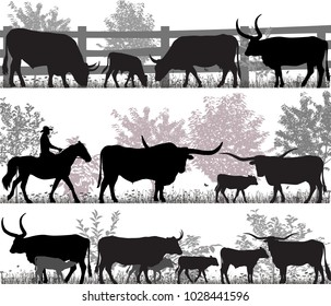Silhouettes of cattle breed of texas longhorn