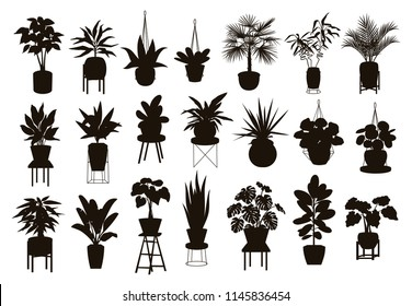 silhouettes collection of  decor house indoor garden plants in pots and stands graphic set