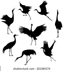 silhouettes of the cranes on white background