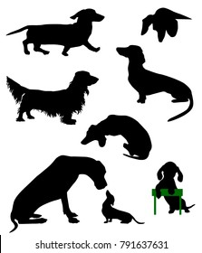 Silhouettes of dachshunds. Vector illustration.