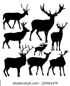 silhouettes of the deer