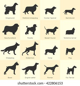 Silhouettes of different dogs breeds icon set with detailed description of appearance and character vector illustration