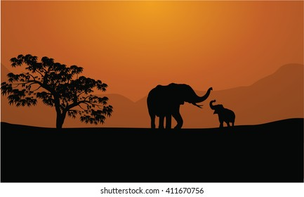 Silhouettes of elephants on mountain backgrounds  at sunset