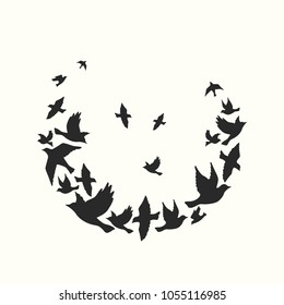 Silhouettes of a flock of birds. Vector illustration. Simple background.