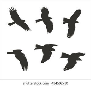 Silhouettes of flying eagle isolated on white