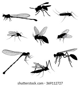 Silhouettes of Flying Insects. Vector Illustration