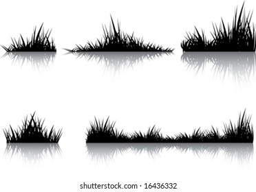Silhouettes of grass with the reflection. Illustration conducted was used as the dummies for your composition.