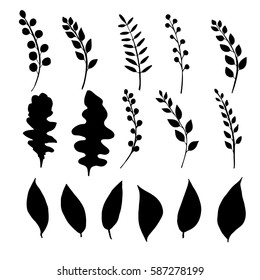 Silhouettes of hand drawn twigs, branches, leaves. Set of botanical elements made by ink drawing. Plants isolated on white. Vector illustration. Decorative elements.