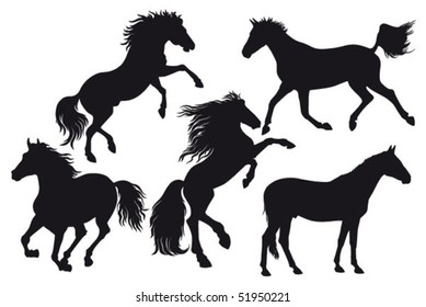 silhouettes of horse